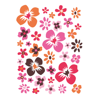 coloured flowers