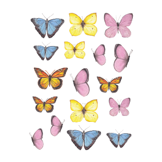 mix butterfly